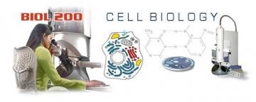 BIOL 200 banner image